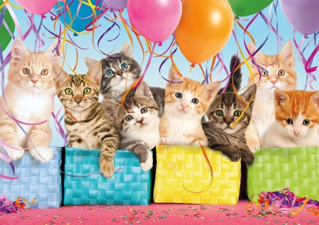 Kittens - cute, balloon, coloorful, pisici, cat, birthday, kitten, animal