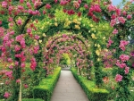 Floral tunnel