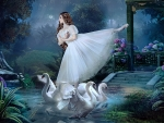Dance With The Swans