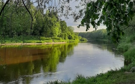River Gauja in Latvia - river, trees, landscape, calm, Latvia, reflection