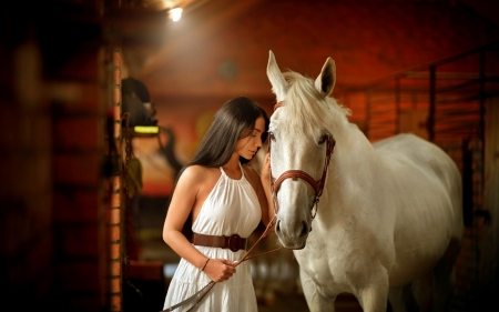The queen with her horse - horse, white, girl, sweet