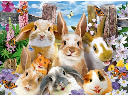 Rabbit selfie - fantasy, rabbit, hamster, guinea pig, funny, bunny, selfie, animal, cute