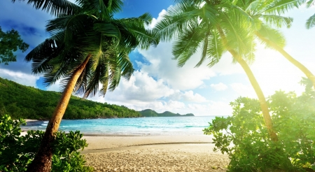 Exotic island - summer, nature, landscape, scene, shore, exotic, holiday, beach, seashore, wallpaper, island, tropical