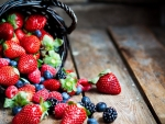 Berries in basket
