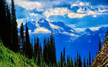 View from atop Mt. Revelstoke, Canadian Rockies - clouds, sky, trees, landscape