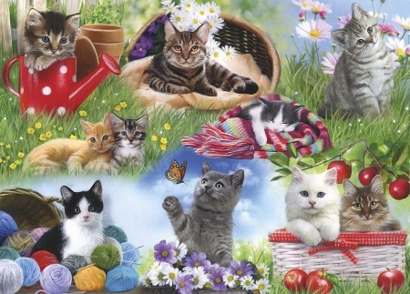 Cats - watering can, grass, apples, basket, wool, flowers, scarf, kitties, painting
