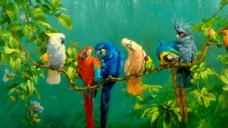 Colorful Birds On Branch - colors, leaves, parrots, butterfly, blossoms