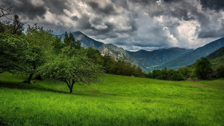 Provence - Provence, cool, grass, green, mountains, France, nature