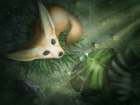 :) - fennec, marina isakova, view from the top, frumusete, luminos, fennecc, water drop, leaf, cute, fantasy, vulpe, fox, green