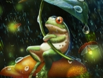 HAPPY FROG FOR DI