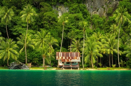 Tropical paradise - paradise, green, Philipipines, tropics, coast, palms, forest, vacation, house, beautiful, sea