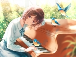 Blue Bird Pianist