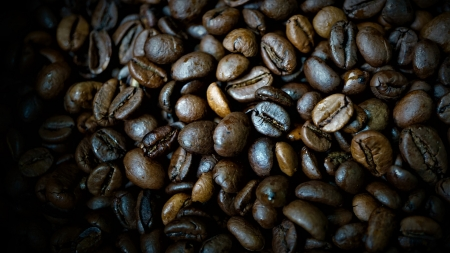 Roast Coffee - brown, coffee, dark, beans, roasted, roast, abstract, food, beverage, photography