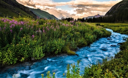 summer river - flowers, river, sky, mountains