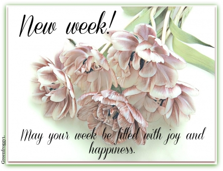 NEW WEEK - WEEK, COMMENT, NEW, CARD