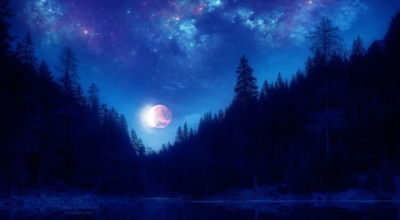 Magical moon - art, moon, digital art, wallpaper
