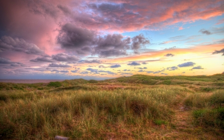 Meadow by Sea - sunset, Denmark, sea, meadow, clouds