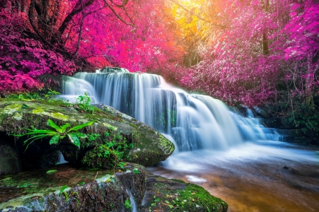 Forest waterfall - trees, rocks, forest, colorful, cascades, waterfall, beautiful