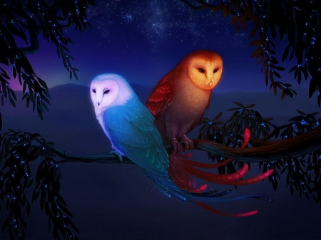 Two Owls - Art, Two Owls, Artwork, Owls