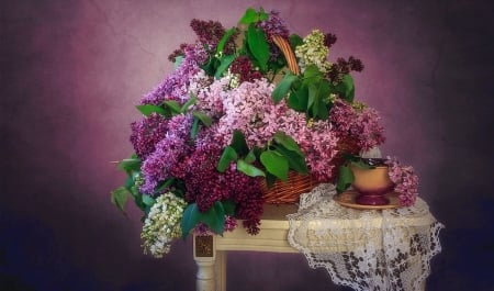 Lilacs and Lace - photograph, table, purple, lace, Flowers, beaufiful, lilacs, floral