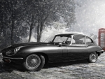 The Legendary E-Type