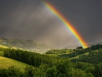Rainbow over Poland