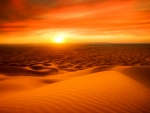 Sahara desert at sunset