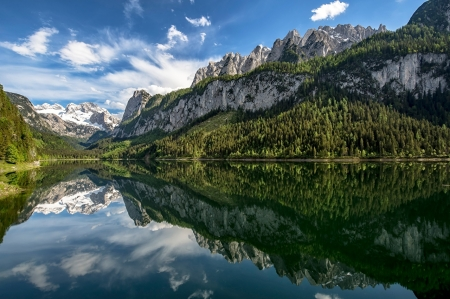 Lake Near The Forest - mountains, lake, forest, nature, trees, alps, reflection