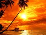 Bora Bora Tropical Sunset