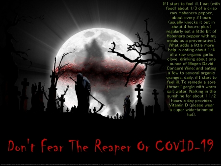 Don't Fear the Reaper or COVID-19 - fear, death, health, coughs, healing, halloween, sick, COVID-19, religious, retired, bronchitus, spiritual, fitness, grim reaper, hope, seniors, love, graveyard, scary, fever, flu, peace, fright, home remedies, sinusitus, colds, virus, coronavirus, dark, illness, faith, wisdom, moon