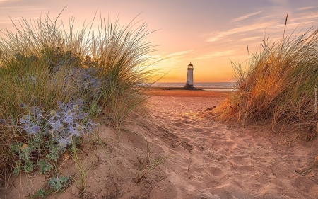 Lighthouse in Wales, UK - grass, sea, lighthouse, beach, sand, UK