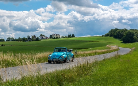 Beetle on the Road - clouds, road, car, Beetle, fields
