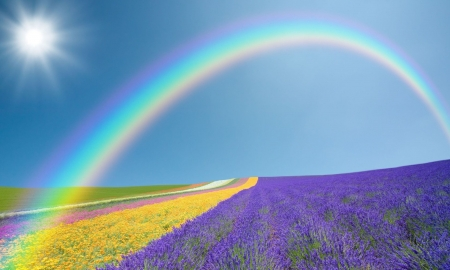 Somewhere Over the Rainbow - Pink, Green, White, Flowers, Blue Sky, Yellow, Purple, Rainbow, Colorful, Sun