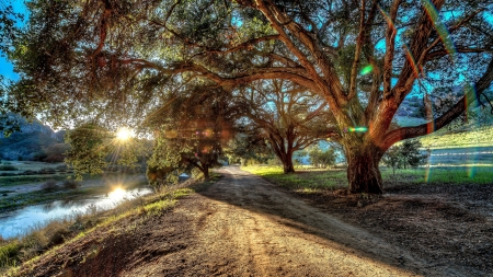 Sunset - photography, UHD, summer, path, 4k, nature, sunset, trees