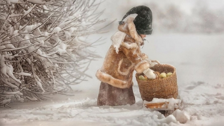 in the snow - boy, snow, basket, winter