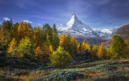 Matterhorn Near The Village Zermatt, Switzerland - landscape, snow, clouds, alps, trees, sky