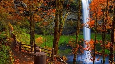 Waterfall in Forest - river, autumn, trees, fence, leaves, colors