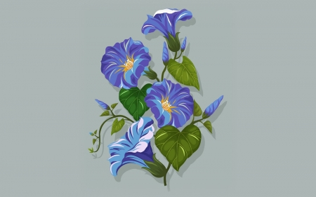 Morning Glory - flowers, morning glory, blue, vector