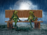 Wet Frog Couple