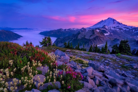 Mt. Baker at sunset - wildflowers, rocks, mountain, river, sunset, beautiful, Baker, lake