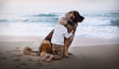 The Bond Between a Boy and His Dog