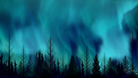 Northern Lake - trees, cyan, forest, Firefox theme, northern lights, aurora borealis, sky