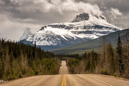 Icefields Parkway View,Jasper National Park - forest, alberta, mountains, clouds, sky, road, trees, canada