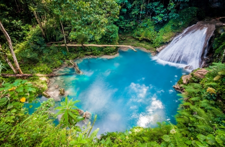 The Blue Hole in Ocho Rios, Jamaica - forest, exotic, Jamaica, hole, waterfall, beautiful, river, blue, jungle