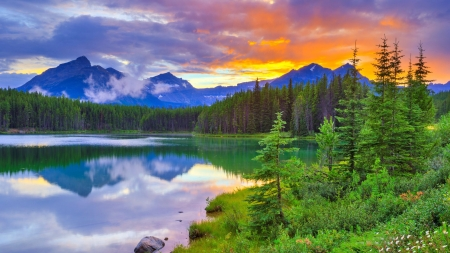 Herbert Lake, Banff National Park - alberta, mountains, sunset, trees, clouds, sky, canada