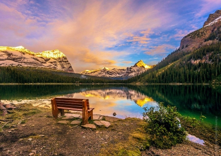 Lake O'Hara Sunrise, Yoho National Park - alberta, canada, banff, mountains, bench, sky