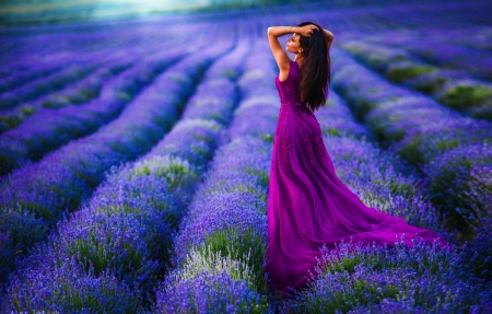 Morning in Lavender Field - rows, girl, plants, blue, blossoms