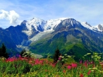Valley Of Flowers National Park Trek