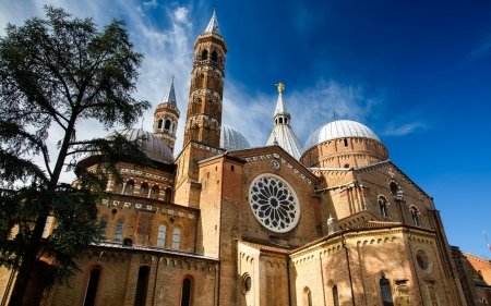 Cathedral in Italy - cathedral, church, Padua, Italy