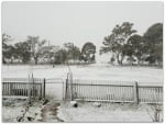 SNOW AT BOMBALA, NSW, AUSTRALIA